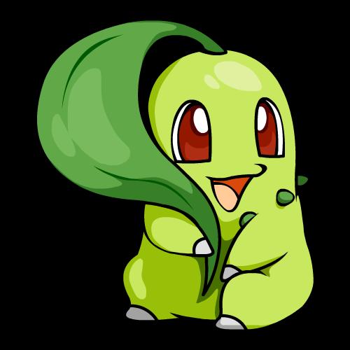 【图片】可爱的菊草叶,最萌那片绿绿的叶子~ 菊草叶吧 百度贴吧