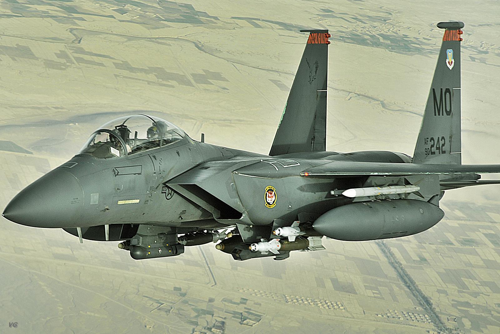 F 15SE (航空機)の画像 p1_39