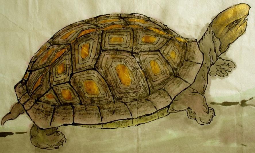 搞笑乌龟纹身分享展示图片