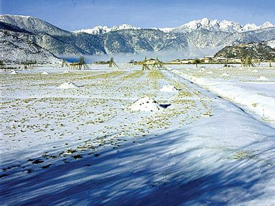 香格里拉周边旅游景点介绍 石卡雪山图片