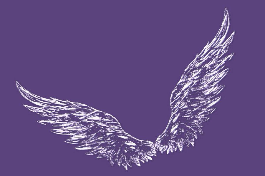 天使的翅膀_抠图吧_百度贴吧图片