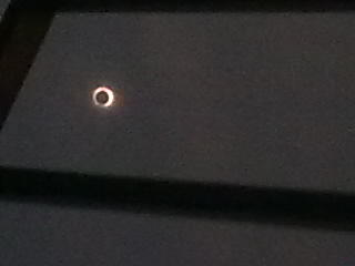 日食日 - 冰河时期 - Gloom Shepherd