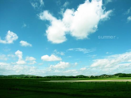 机场的云 我是稻田里的一只小青蛙