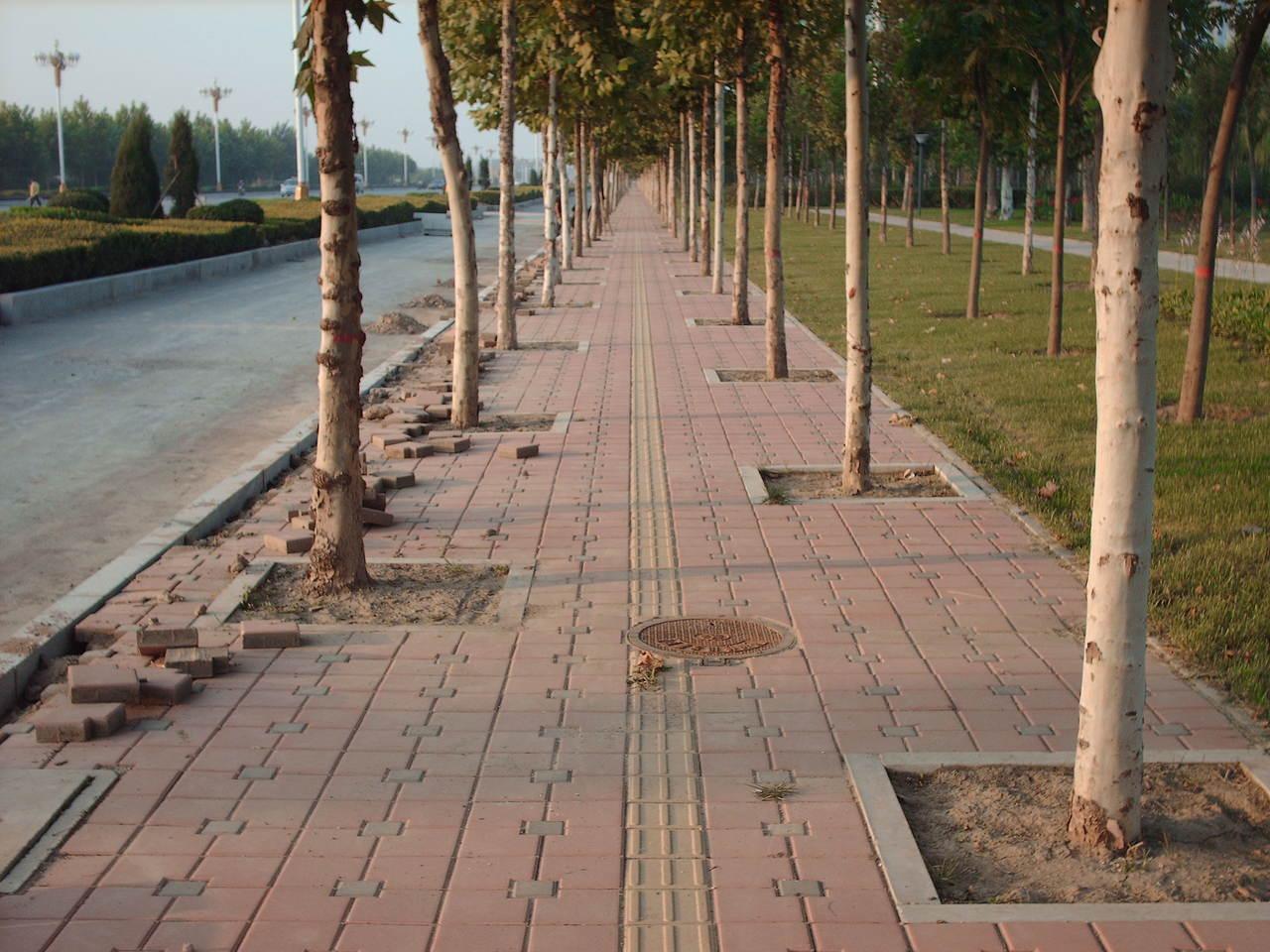紧急 quot 人行道砖 quot 发生用红色砖真丑 沧州的悲哀 沧高清图片