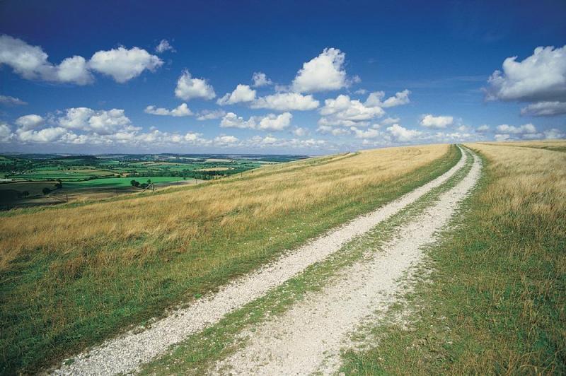 家乡美景如画 图