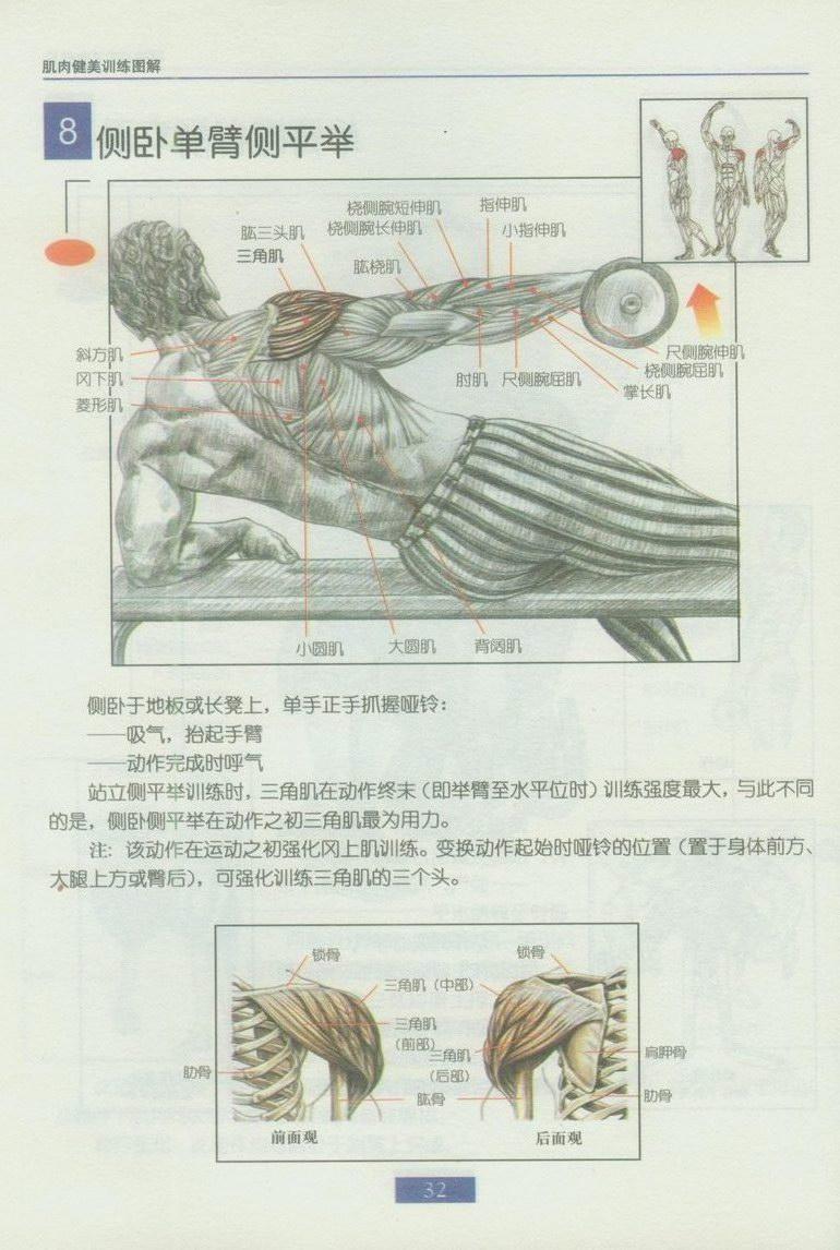 肱三头肌哑铃训练图解图片