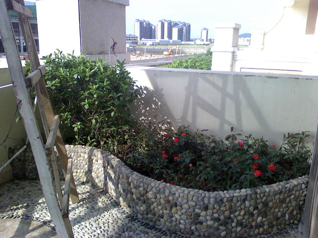 农家小院鱼池设计图 农村家庭鱼池设计图 家庭庭院图片