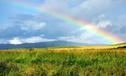 台湾出现世界史上最持久彩虹