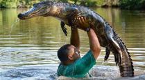 实拍男子与20多条鳄鱼同游嬉戏