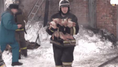暖心街拍短片:消防员拯救世界