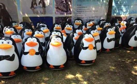 穿着羽绒服遇上如此企鹅展