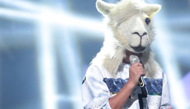 羊驼翻唱周杰伦《黑色幽默》 动人歌声唱哭猜评团
