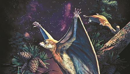 中国发现最原始滑翔哺乳动物化石