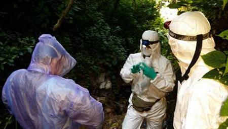 中国科学家寻获SARS病毒源头