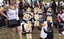 企鹅展用充气玩具充数