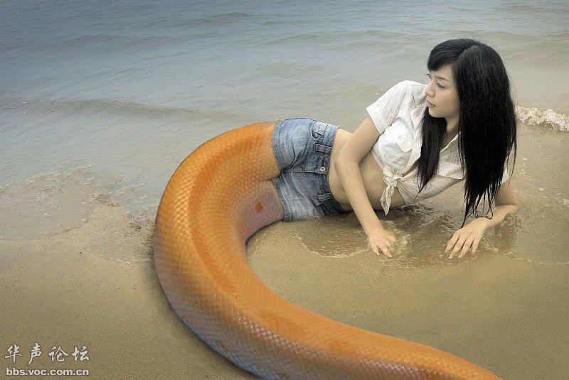 美女蛇大全