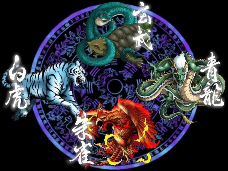 欧美高清白虎_道教中有青龙,白虎,朱雀,玄武四神,分别是什么神?