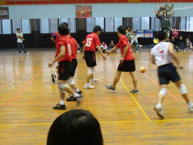 排球动作要领图解大图 排球规则和打法图解 蛙泳的动作要