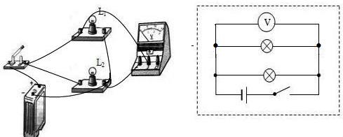 物理 根据实物图画电路图.图片