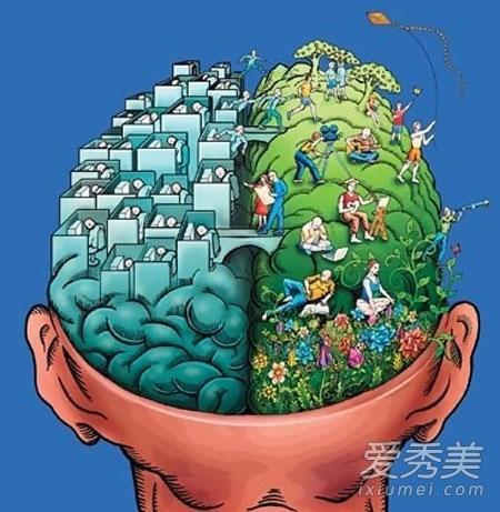 左脑��!$_测验:你更偏重于使用左脑还是右脑?