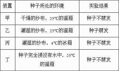 根据记录情况,可知玉米种子萌发的环境条件是(  )