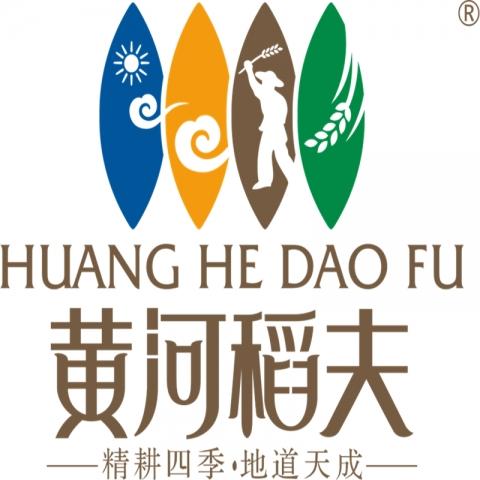 黄河稻夫油菜花节