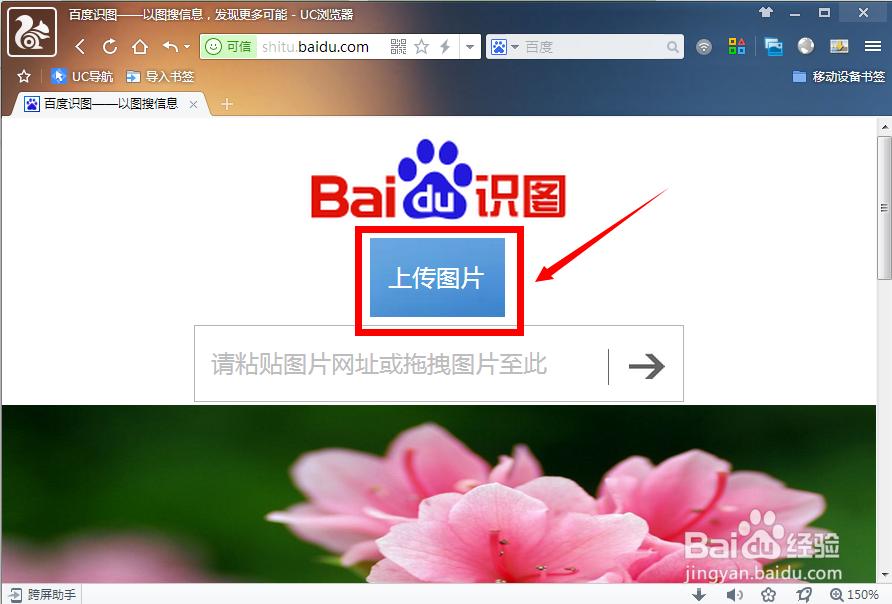 """进入百度识图官方网站(shitu.baidu.com),点击""""本地上传""""按钮.图片"""