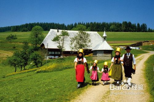 春节去欧洲旅游,怎么走可以欣赏到雪山黑森林