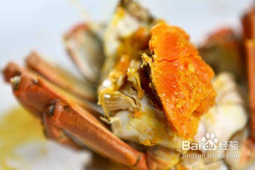 海蟹公母分辨图片图片大全 如何区分螃蟹公母 长春亚泰吧图片