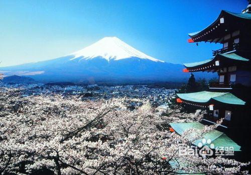 说起日本留学条件 不能一言以蔽之
