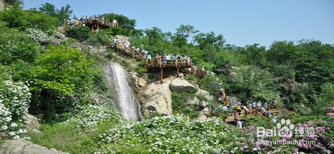九如山瀑布群风景区一日游之夏季九如山游后感