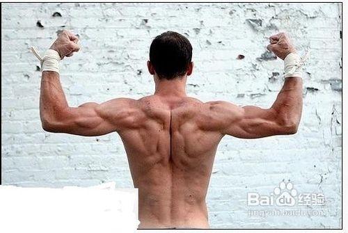 肌肉男锻炼计划[2]怎样练宽你的肩膀