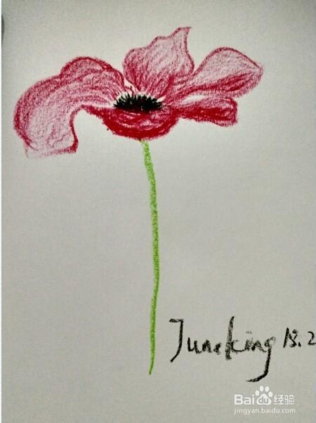 简笔画:油画棒画花朵步骤