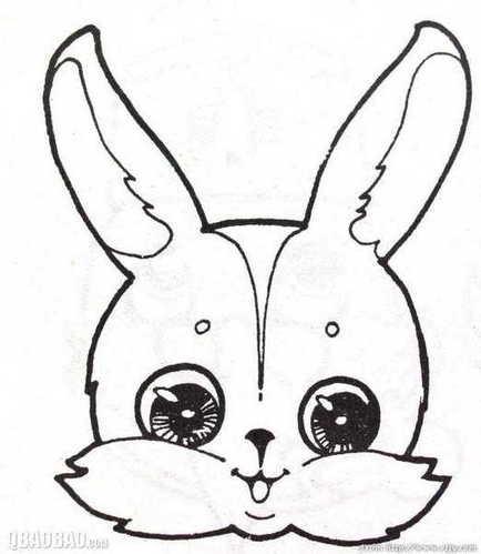 怎样画漂亮的兔子简笔画