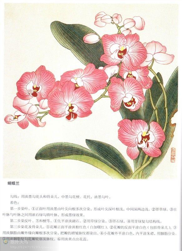 工笔百种花卉染色方法图片