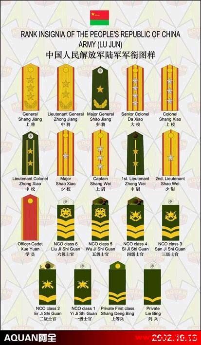中国现役军队肩章臂章一览