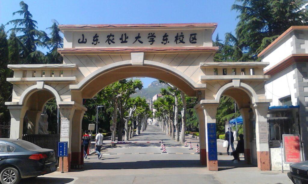 山东农业大学东校区_泰安(1024x614)-泰安农大 泰安农大幼儿园 山图片