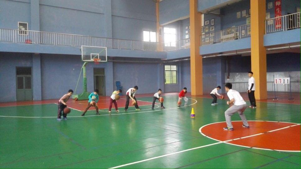 洪大辰星体育文化发展