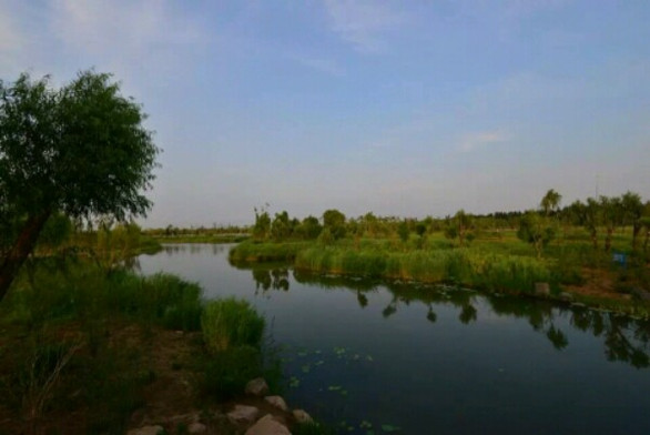 济西家湿地公园_济南