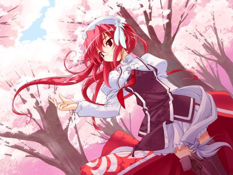 日本动漫樱花图片