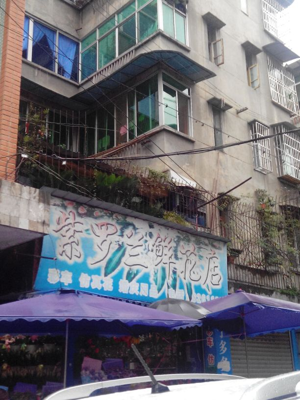 紫罗兰鲜花店