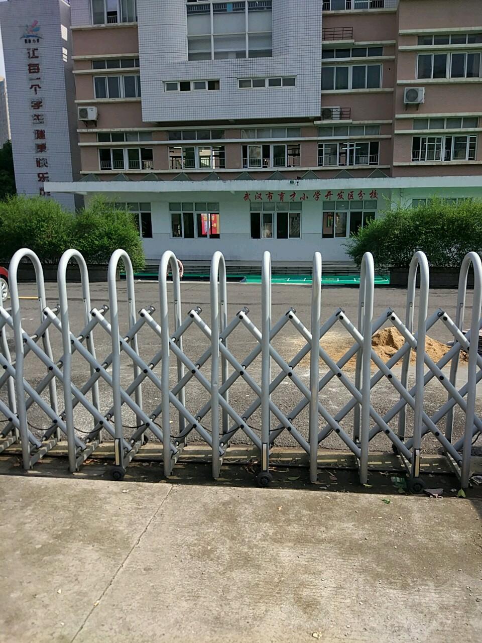 武汉市育分校开发区大队小学小学委抄报手竞选图片