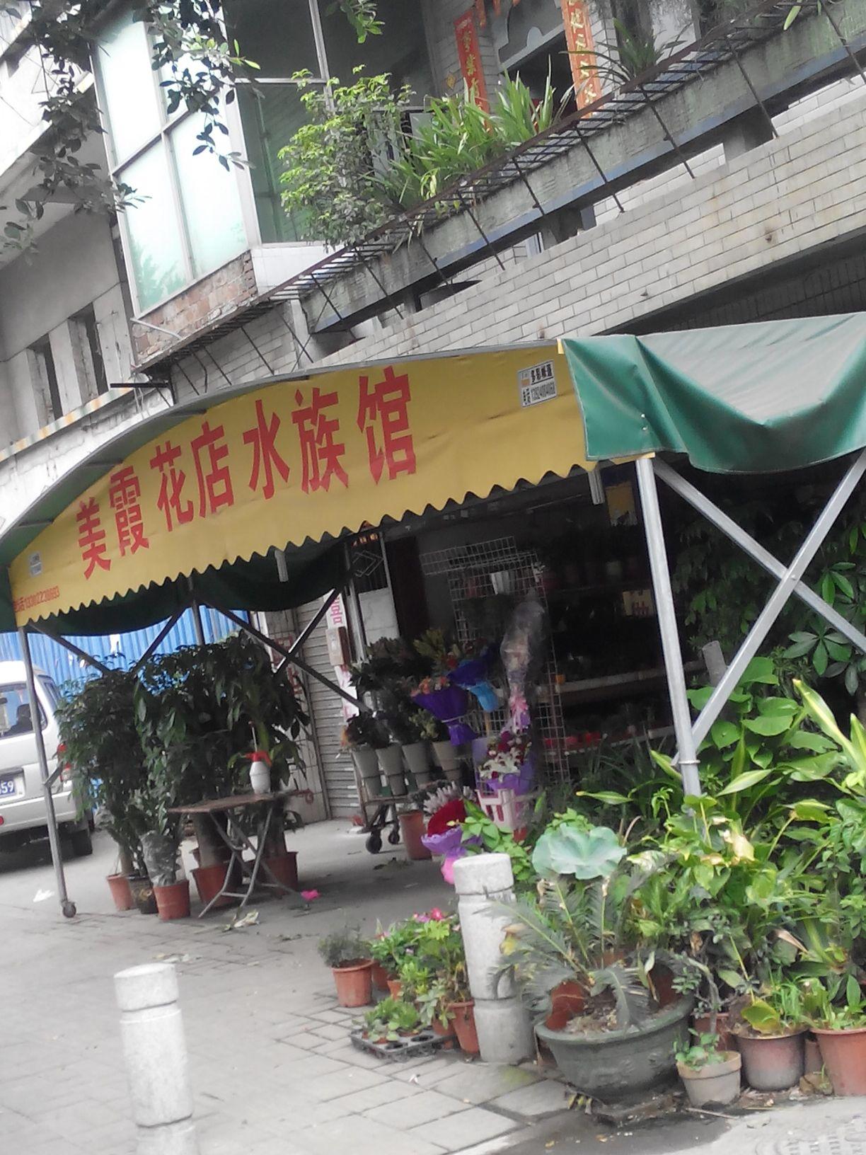 美霞花店水族馆(文冲店)