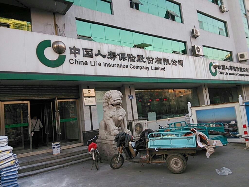 中国人寿保管股份拥有限公司(丰满顶公司)