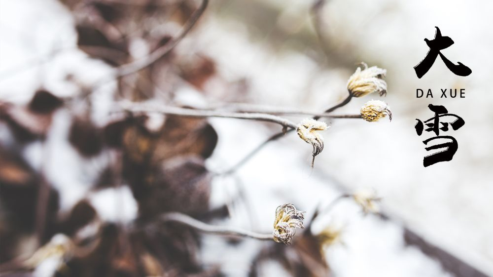 今日大雪:天寒地冻围炉夜话 万物冬藏待春来