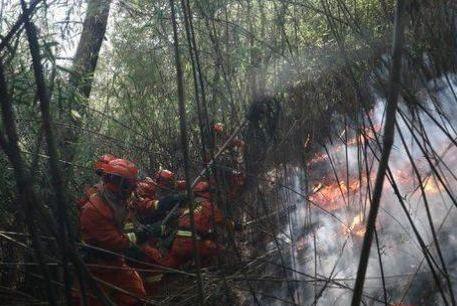 木里森林火灾县林草局长牺牲:孩子正在读大学 家中有八旬老父