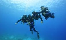 青岛人潜水俱乐部