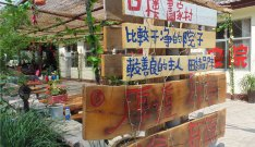 北京口楼画家村农家院图片