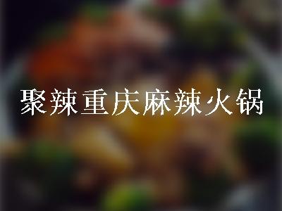聚辣重庆麻辣火锅(花园路店)