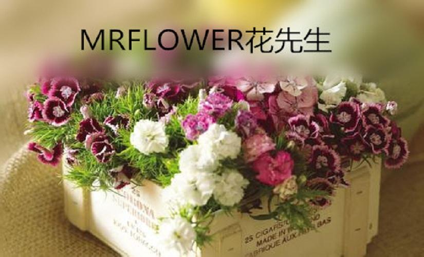 MRFLOWER花先生(体育西路店)